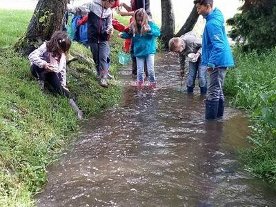 L'étude de la rivière